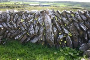49, prehistorisch muurtjevakantie Ierland 079